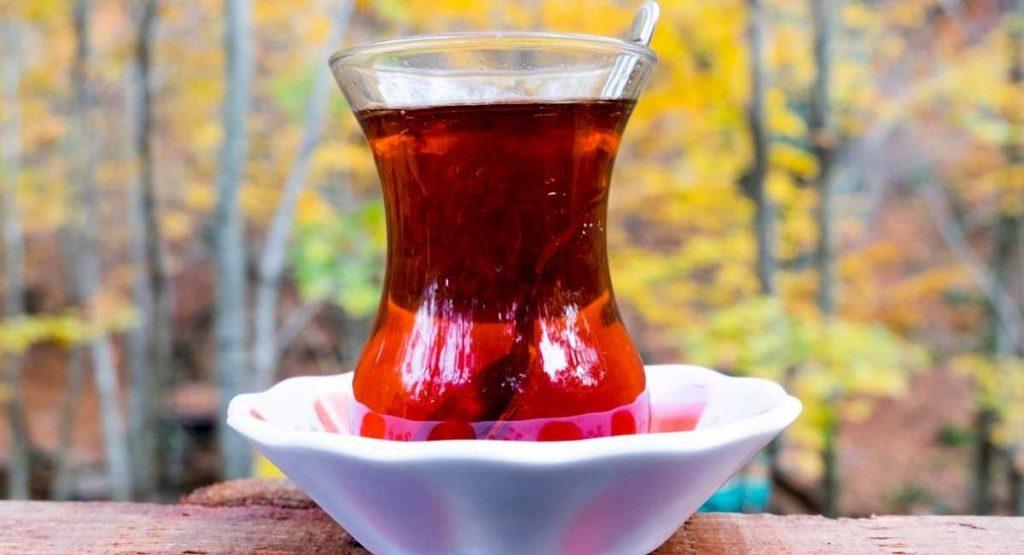 Choosing the Best Nootropic Tea [A Top 5 List]