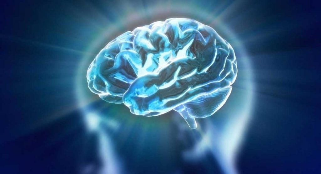 Everything You Need to Know About Neuroenhancers