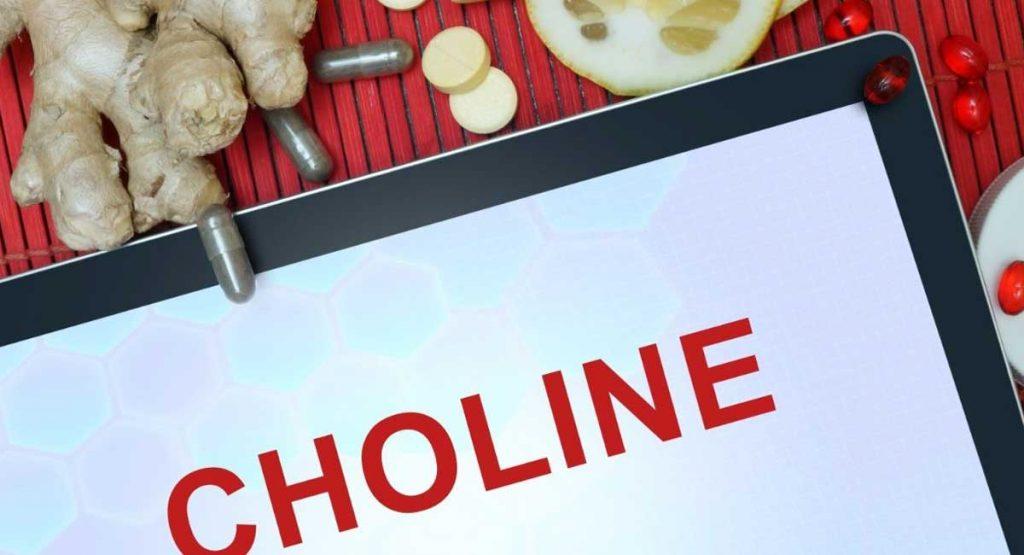Alpha GPC vs CDP Choline